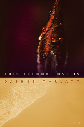 This Tremor Love IsFront Cover