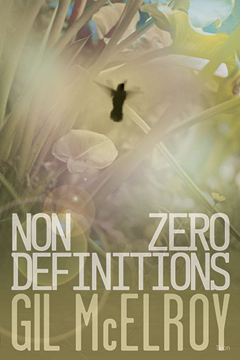 NonZero DefinitionsFront Cover