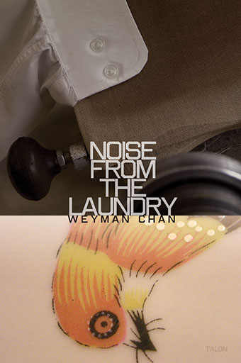 Noise from the LaundryFront Cover