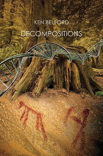 DecompositionsFront Cover